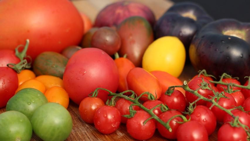 Heirloom Tomato Seed